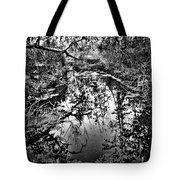 Sandy Creek Tote Bag