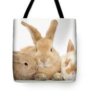 Sandy Rabbit And Babies Tote Bag
