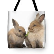 Sandy Rabbits Sharing Grass Tote Bag