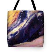 Sassie Tote Bag