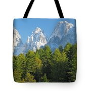 Sasso Lungo Group In The Dolomites Of Italy Tote Bag