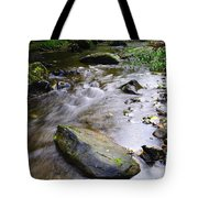 Satus Creek In Autumn Tote Bag