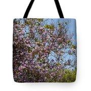 Saucer Magnolia Or Tulip Tree Magnolia X Soulangeana Tote Bag