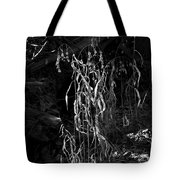 Saw Oats In River Flood Area Tote Bag