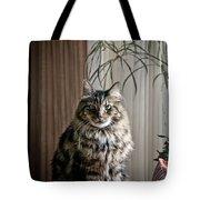 Say Meowww Tote Bag