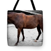 Sc-046-12 Effects Tote Bag