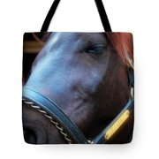Sc-048-12 Effects Tote Bag