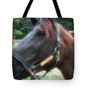 Sc-049-12 Effects Tote Bag