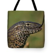 Scales For Breakfast Tote Bag