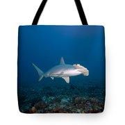 Scalloped Hammerhead Shark Tote Bag