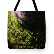 Scarf Of Green Tote Bag