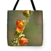 Scarlet Globe-mallow Tote Bag