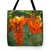 Scarlet Wisteria Tree - Sesbania Punicea Tote Bag
