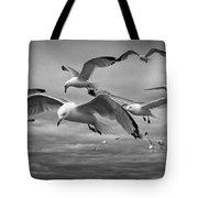 Sea Gull Scavengers Tote Bag