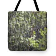 Scenic View In Zion National Park Tote Bag