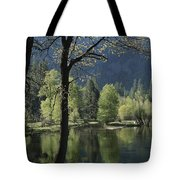 Scenic View Of The Merced River Tote Bag