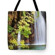 Scenic Waterfall In Autumn Tote Bag
