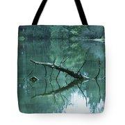 Scenic Woodland Lake Tote Bag