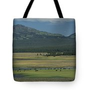 Scenic Wyoming Landscape With Grazing Tote Bag