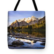 Schaffer Lake And Mount Huber Tote Bag