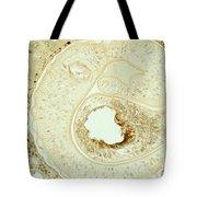 Schistosoma Mansoni Tote Bag