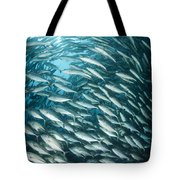 School Of Jacks, Indonesia Tote Bag