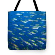 School Of Wide-band Fusilier Fish Tote Bag