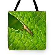 Scorpion Fly Nosing Around Tote Bag