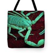 Scorpion Glows In Uv Light Costa Rica Tote Bag