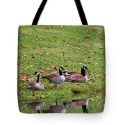 Scott Lake Visitation Tote Bag