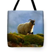 Scottish Blackface Tote Bag