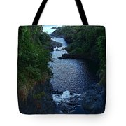 Scripture And Picture Psalm 24 2 Tote Bag