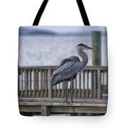 Scruffy Heron Tote Bag