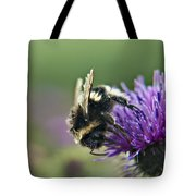 Scrufy Old Bee Tote Bag