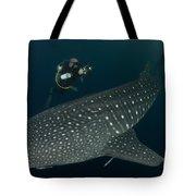 Scuba Diver And Whale Shark, Papua Tote Bag