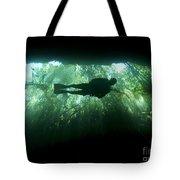 Scuba Diver In The Cavern Part Tote Bag by Karen Doody