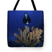 Scuba Diver Swims Underwater Amongst Tote Bag