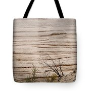 Sculpted By Nature Tote Bag