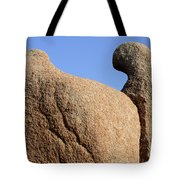 Sculpted Rock Tote Bag