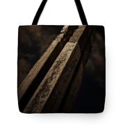 Sculpture By Moonlight Tote Bag