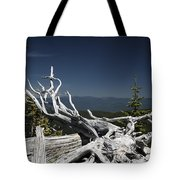 Sculpture By Mother Nature Tote Bag