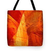 Sculptured By The Wind Tote Bag