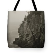 Sea Cliff At Quoddy Head  Tote Bag
