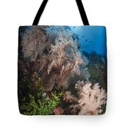 Sea Fan On Soft Coral In Raja Ampat Tote Bag