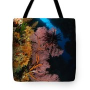 Sea Fans And Crinoid, Fiji Tote Bag