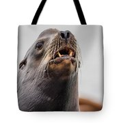 Sea Lion And Yellow Fangs Tote Bag