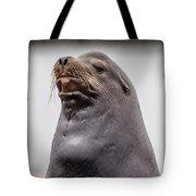 Sea Lion Satisfaction Tote Bag