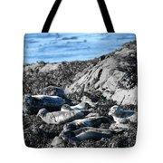Sea Lions In Alaska Tote Bag