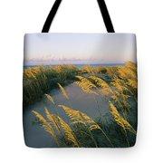 Sea Oats, Dunes, And Beach At Oregon Tote Bag