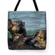 Sea Otter Enhydra Lutris Bachelor Male Tote Bag